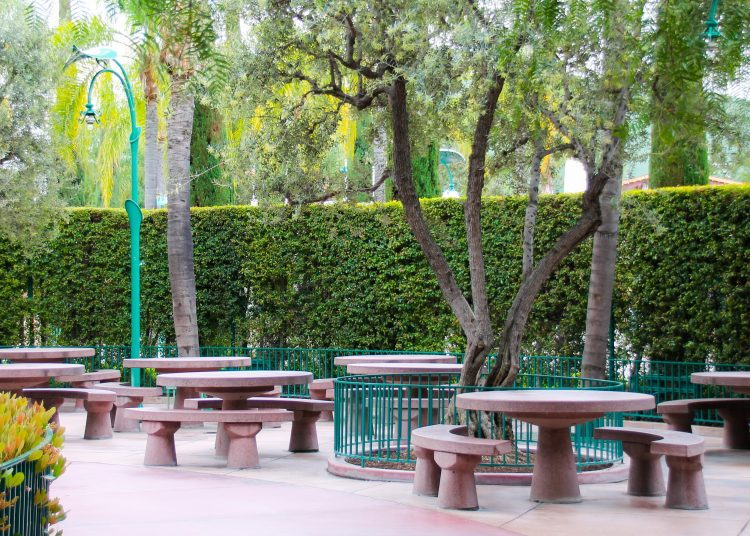 Image result for picnic area disneyland
