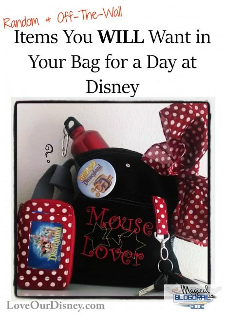 Random Items for Disney Vacation