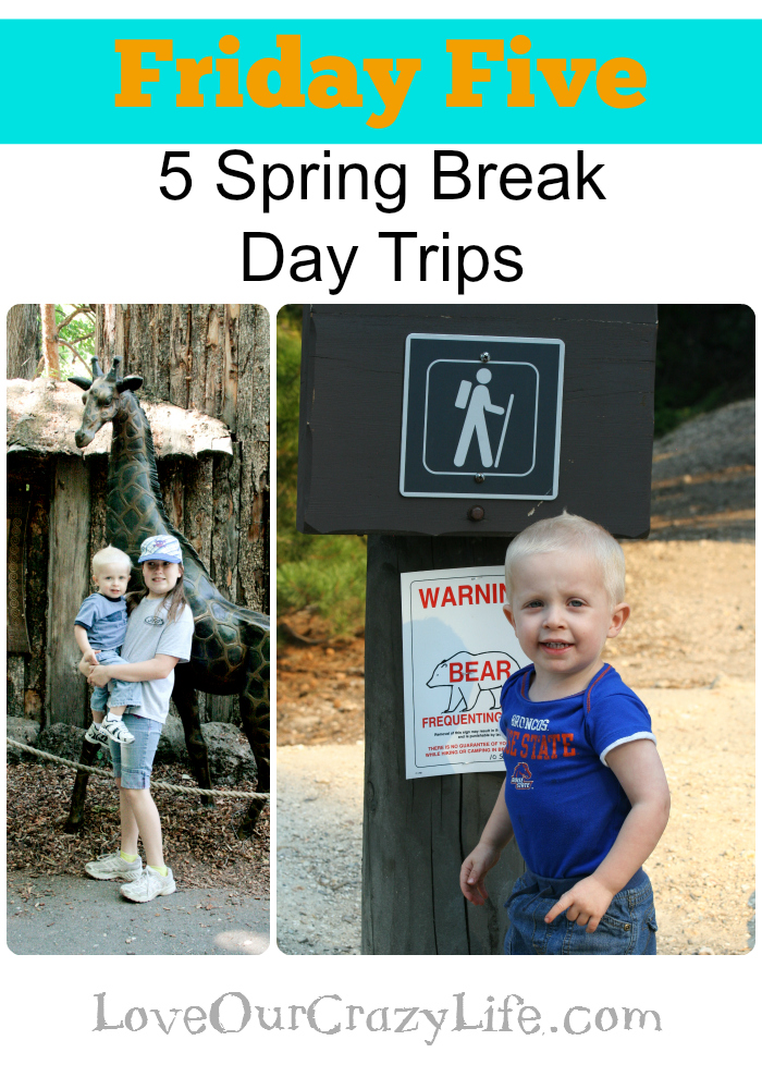 5 day trips for Spring break or summer vacation