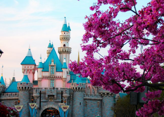 Sprintime at Disneyland Sleeping Beauty Castle