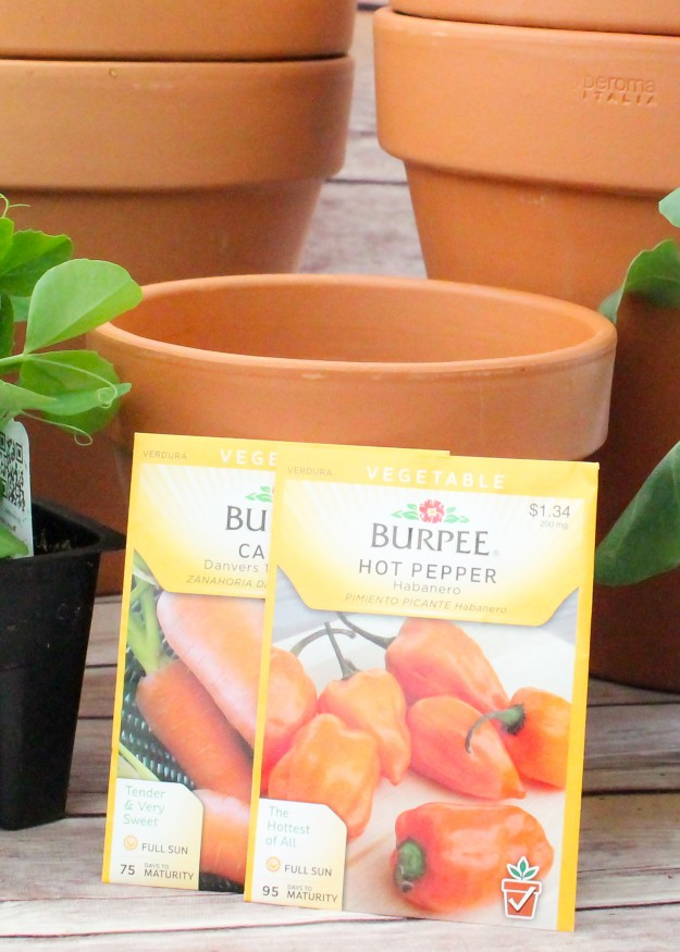 When gardening in containers- look on seed packet to see if plants do well in pots.