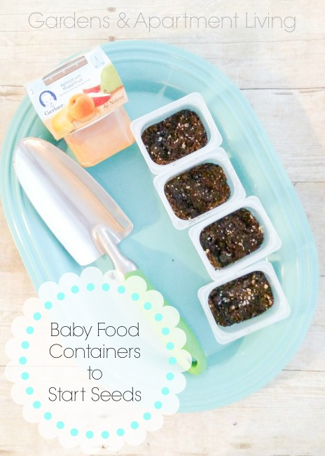 Baby food containers to Start Seeds and all about having a garden while living in an apartment