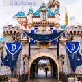 5 Reasons to visit Disneyland this summer