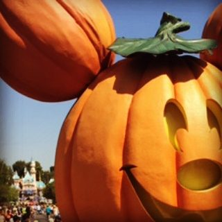 7 Reasons to Visit Disneyland In Fall