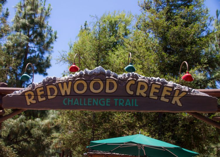 Redwood Creek Challenge Trail At Disney California Adventure in Disneyland