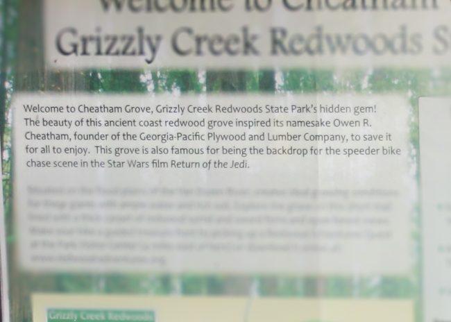 Cheatham Grove
