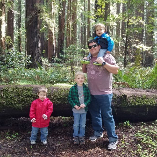 Cheatham Grove in the Lower Humboldt County Redwoods parks