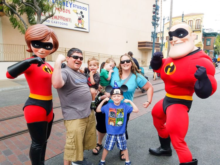 Disney's Disability Access System