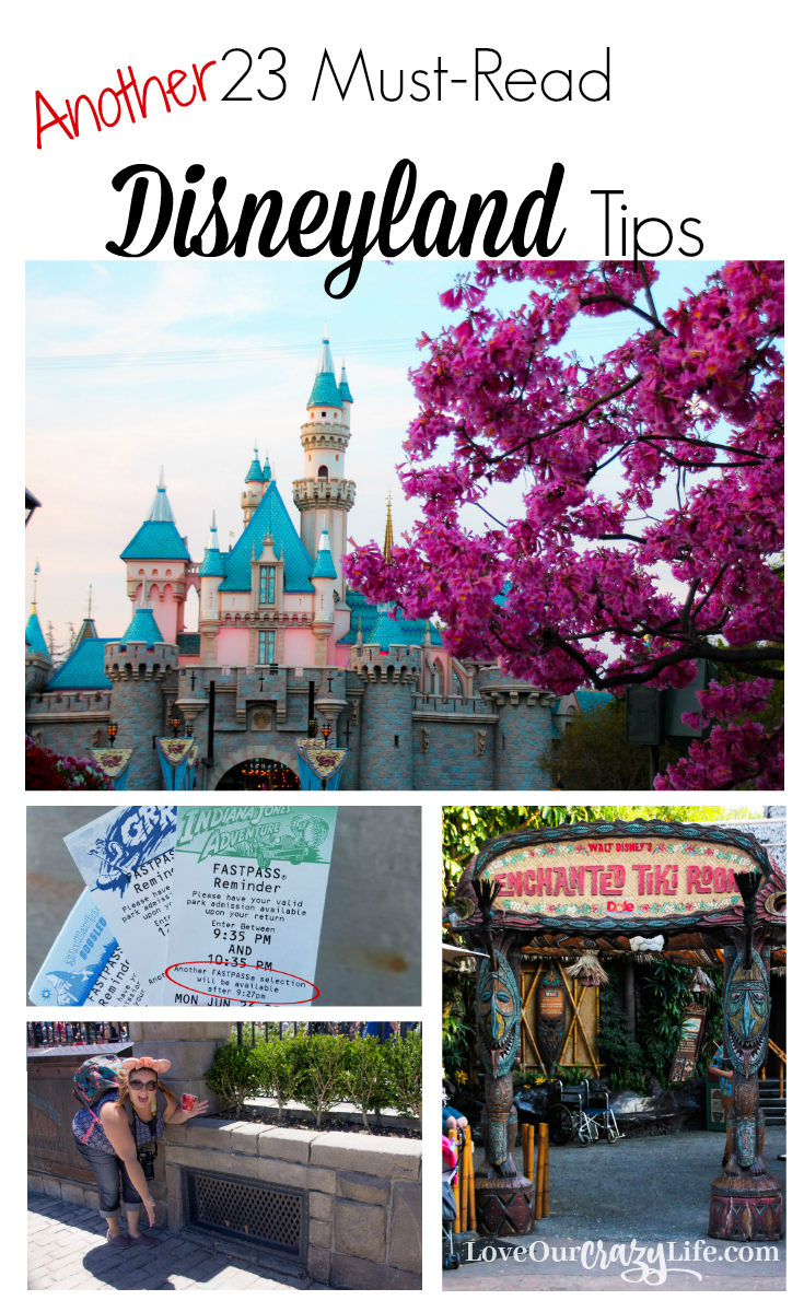 These are awesome tips for any Disneyland Vacation. Not just for first timers. And the article contains links to two other lists of tips type articles.  Disneyland   Disney   Travel   Vacation   Travel Tips   Disney California Adventure   Theme Parks