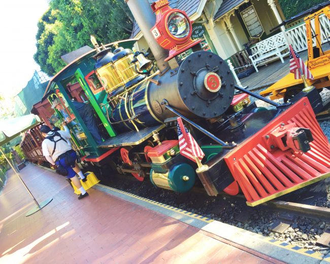 One of the best parts of your visit to Disneyland is the adventures you will have on the train around the park!