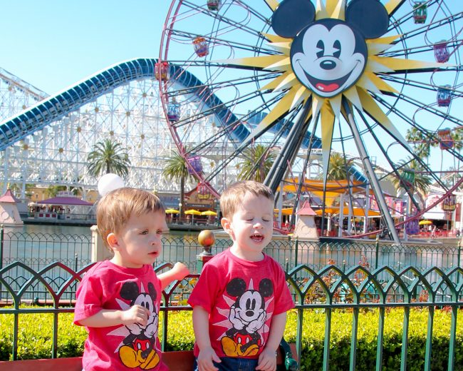 Learn if you should buy Disneyland Tickets that include park hopper options when you are planning to visit the resort!