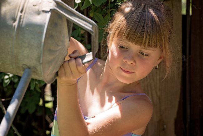 kids earn money watering plants