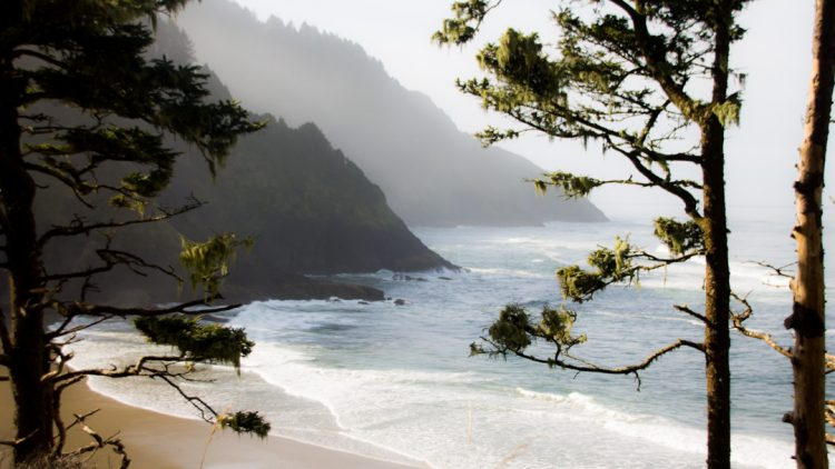 Heceta Head Beach on Highway 101 road trip from Seattle to San Diego