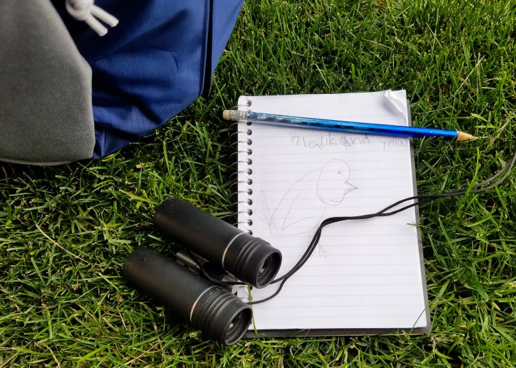 Put binoculars and sketch pad in hiking pack for kids