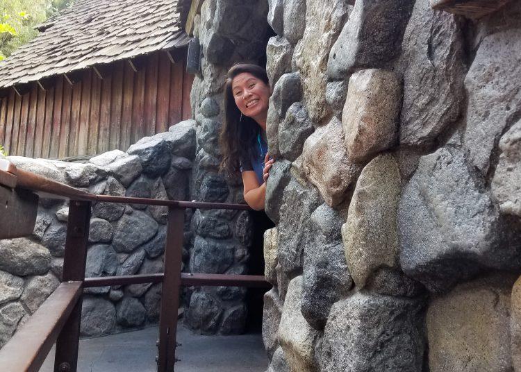 walked off Splash Mountain ride breaks down at Disneyland