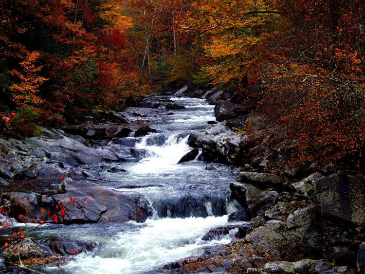 Smoky Mountains State Park