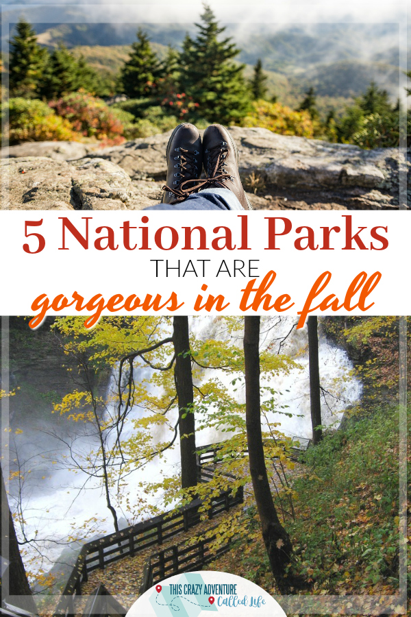These National Parks are gorgeous in the fall. From fall foliage, to wildlife, and everything in between, these national parks are worth a visit. #FindYourPark #NationalParks #Fall #Travel #RoadTrip #vacation #ThisCrazyAdventureCalledLife