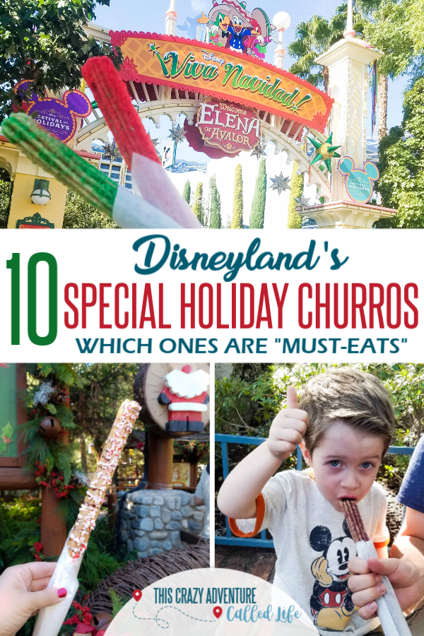 Disneyland has 10 special Holiday churros this year. We tried all of them. Which are the best and which can you skip? Are any bucket list worthy? Which Disney churros were cheap? Which option is the top pick for 2018. Check out all our tips, secrets, and pictures. Plus link to our video of trying all the options. #Disneyland #DisneylandwithKids #DwKHolidays #ThisCrazyAdventureCalledLife #DisneyFood
