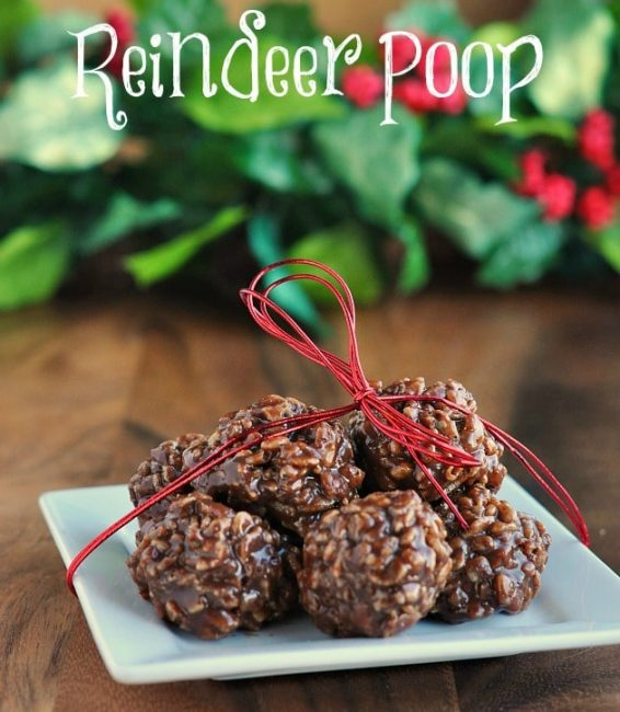 Reindeer-Poop