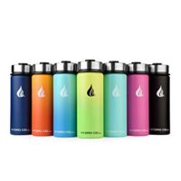 HYDRO CELL Stainless Steel Water Bottle w/Straw
