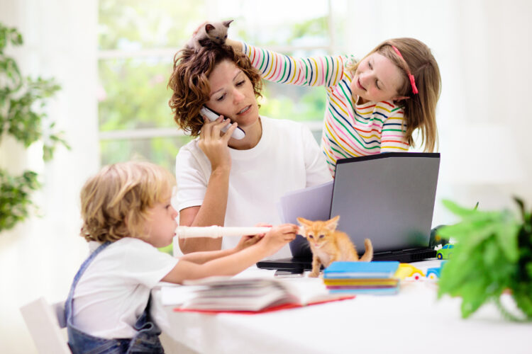 mom trying to work at dining room table with kids, school books, kittens climbing all over